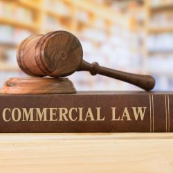 Lawyer Polokwane Commercial Law (Business Law / Corporate Law)